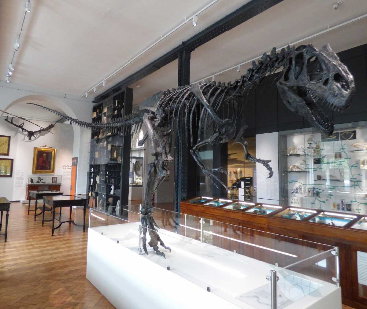 The Lapworth Museum of Geology at the University of Birmingham