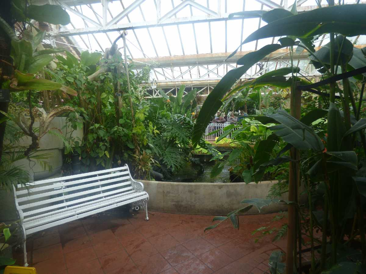 Exploring the Birmingham Botanical Gardens over the years from multiple visits
