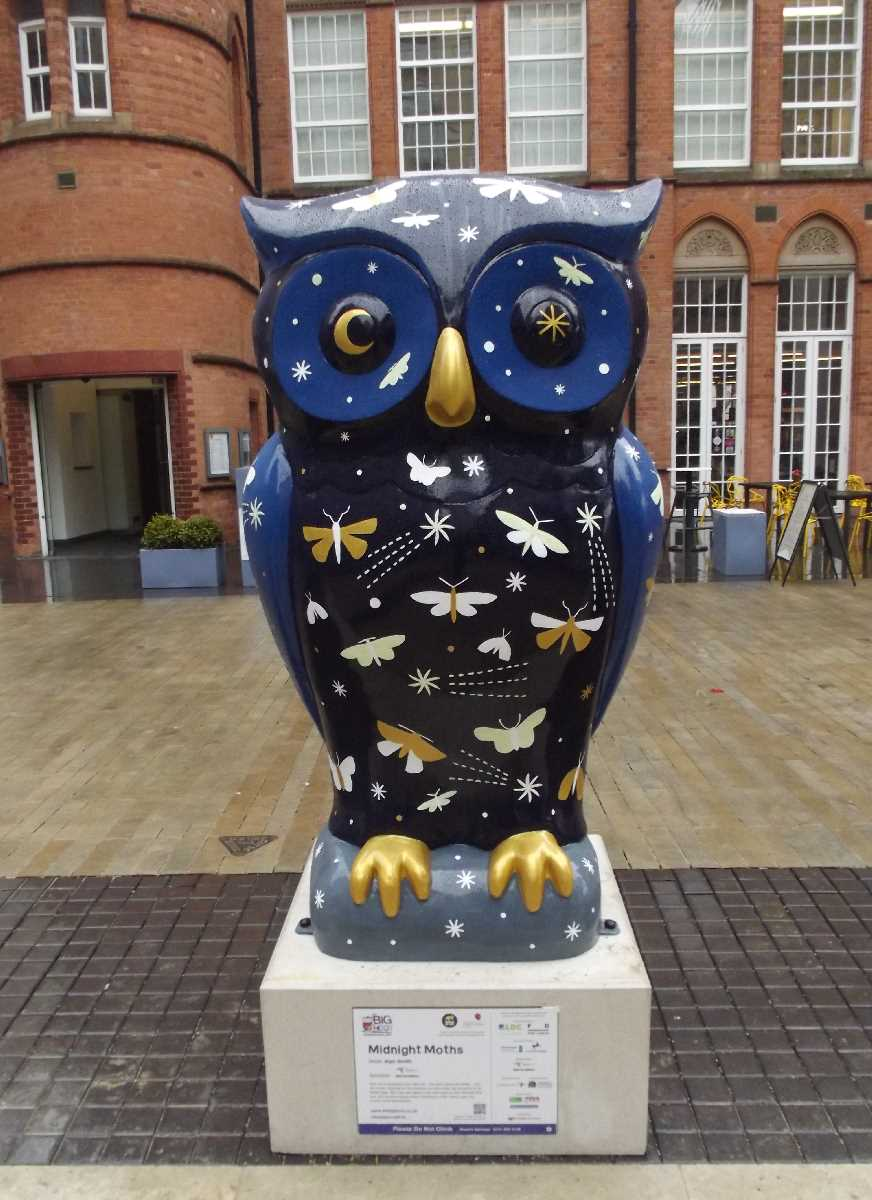 The Big Hoot Oozells Square
