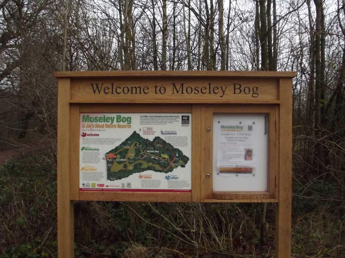 Moseley+Bog%2c+Birmingham+-+A+hidden+Gem!