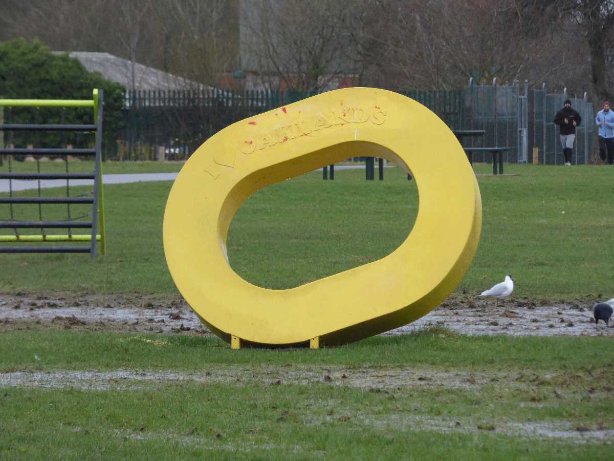 Yellow O`s at the Oaklands Recreation Ground